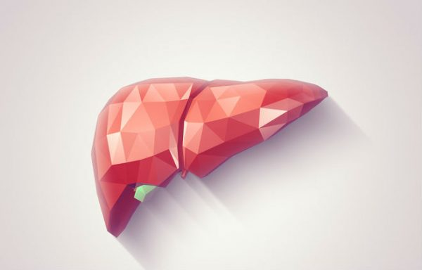 graphic design of a liver