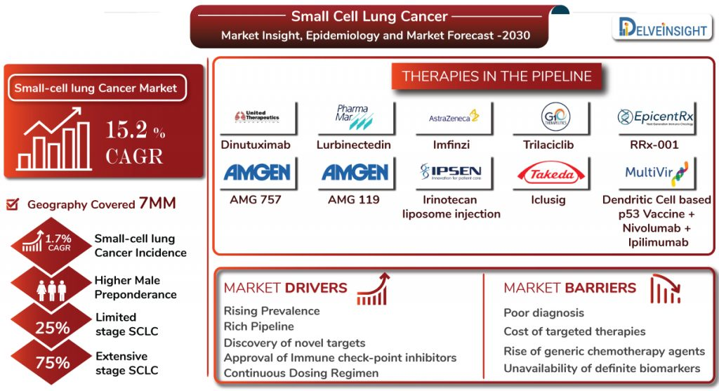 Small Cell Lung Cancer Market