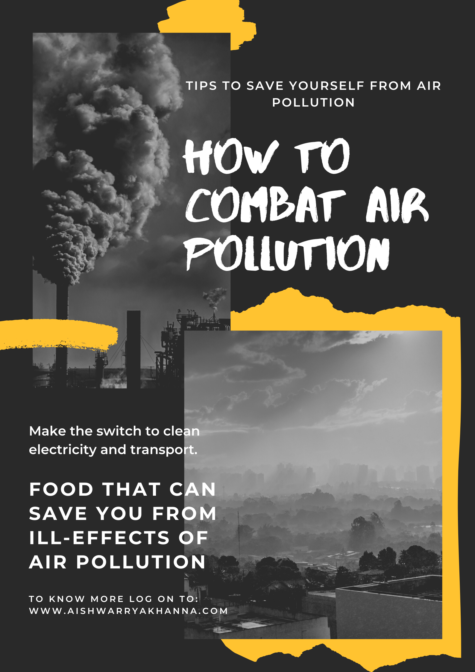 Combating Air Pollution Effects with Food