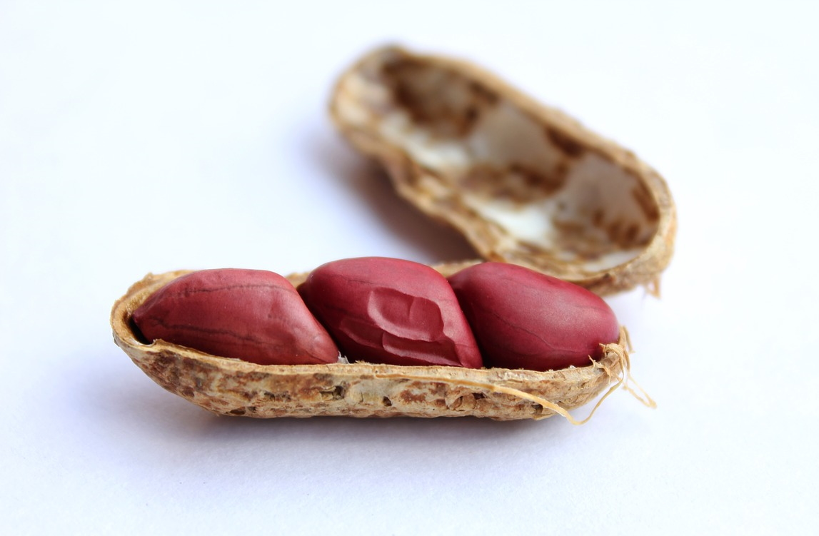 DBV craters on FDA's peanut allergy immunotherapy rejection