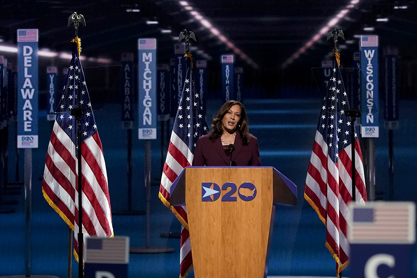 Democratic Convention, Night 3: Making the Party Lines Clear