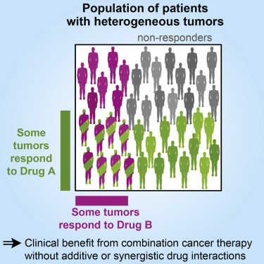 Protected: Predicting Cancer Drug Combinations That Work