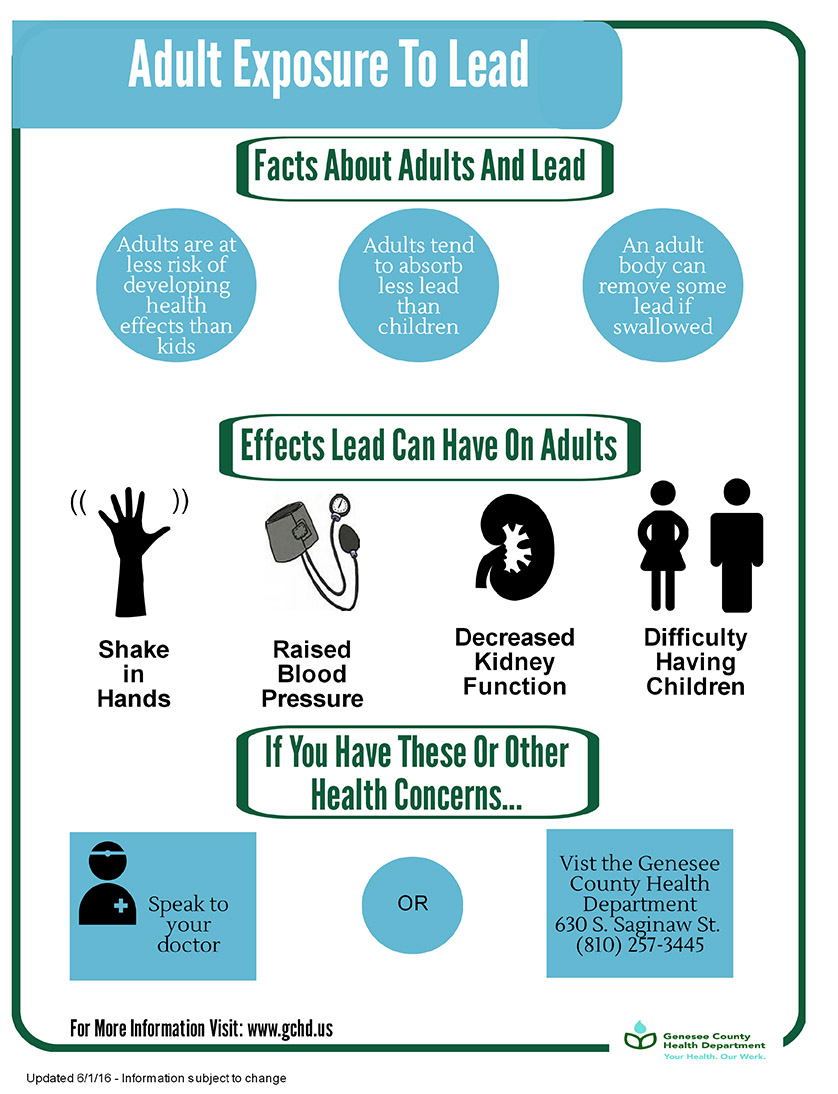 Adult Exposure to Lead