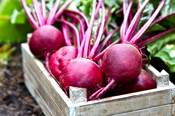 Beets in a wooden box
